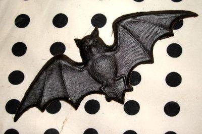 Bat dresden