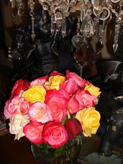 Roses 20092