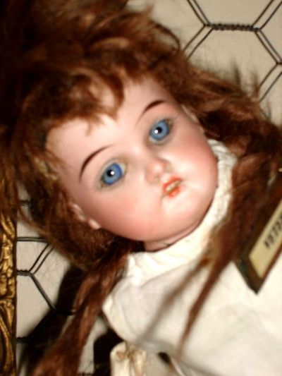 Doll blu